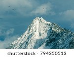 Small photo of Free world of birds flying over the tops of the mountain