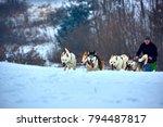 tusnad  romania   28 january...   Shutterstock . vector #794487817