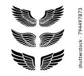 wings for heraldry  tattoos ... | Shutterstock . vector #794497873
