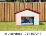 husband or boyfriend man... | Shutterstock . vector #794507047