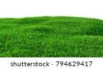 green grass field on small... | Shutterstock . vector #794629417
