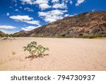 panoramic view of the dry... | Shutterstock . vector #794730937