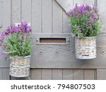 wicker basket with lavender... | Shutterstock . vector #794807503