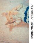 Stock photo little red kitten the kitten lies on the fluffy carpet at home little kitten sleeps close up of 794808547