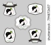 vector icon illustration logo...   Shutterstock .eps vector #794872657