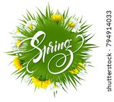 inscription hello spring on... | Shutterstock .eps vector #794914033