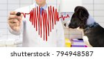 veterinarian standing and... | Shutterstock . vector #794948587