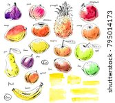 hand drawn ink and watercolor... | Shutterstock . vector #795014173