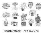 home plants cartoon hand drawn... | Shutterstock .eps vector #795162973