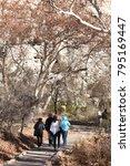 camp verde  arizona.  u.s.a. ... | Shutterstock . vector #795169447