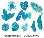 tropical palm leaves  jungle... | Shutterstock .eps vector #795285997