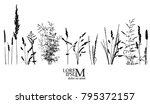 object grass silhouette. vector | Shutterstock .eps vector #795372157