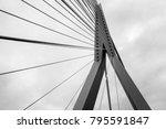 the erasmus bridge lines | Shutterstock . vector #795591847
