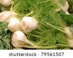 background of anise fennel vegetables - stock photo
