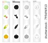 vegetarian  diet  food and...   Shutterstock .eps vector #795696913