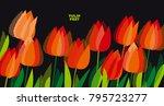 abstract modern vivid floral...   Shutterstock .eps vector #795723277