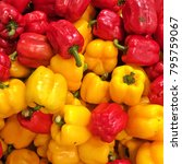 Small photo of Capsicum. This pepper has several types of colors for example yellow, red and green. Capsicum is slightly sweet when used in cooking.