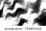 black and white horizontal... | Shutterstock . vector #795841243