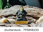 ganesha lord of success  ... | Shutterstock . vector #795848233