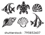 a set of sea creature icons  ... | Shutterstock .eps vector #795852607
