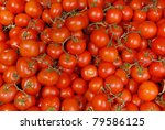 Background of tomatoes on the vine - stock photo