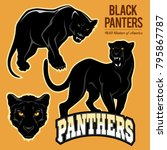 black panthers   vector set... | Shutterstock .eps vector #795867787