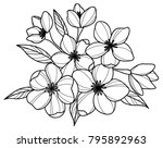 black and white flowers  | Shutterstock .eps vector #795892963