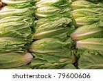 backdrop of romaine lettuce - stock photo