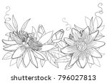 vector garland with outline... | Shutterstock .eps vector #796027813
