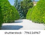 landscaped formal garden white... | Shutterstock . vector #796116967