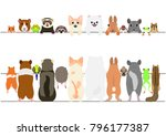 standing pet animals front and... | Shutterstock .eps vector #796177387