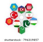 the economic cooperation...   Shutterstock . vector #796319857