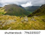 view from the top of dore head...   Shutterstock . vector #796335037
