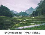 the royal agricultural station... | Shutterstock . vector #796445563