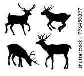 beautiful noble proud sika deer ...   Shutterstock .eps vector #796450897