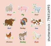 fun farm animals icon with... | Shutterstock .eps vector #796516993