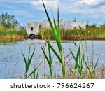 green reeds near swamp and old... | Shutterstock . vector #796624267