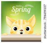 hello spring season background... | Shutterstock .eps vector #796694107