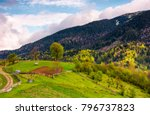 grassy rural hill in mountains. ... | Shutterstock . vector #796737823