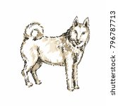 hand drawn husky. sketch ... | Shutterstock .eps vector #796787713