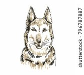 hand drawn husky. sketch ... | Shutterstock .eps vector #796787887