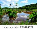 beautiful lake as a spiritual...   Shutterstock . vector #796873897