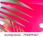 palm leaves and shadows... | Shutterstock . vector #796899367