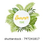 round tropical frame  template... | Shutterstock .eps vector #797241817