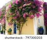 assos city kefalonia | Shutterstock . vector #797300203