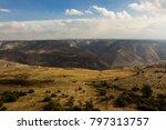 border fence between israel and ... | Shutterstock . vector #797313757