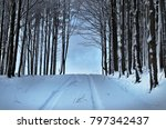 winter forest road disappears... | Shutterstock . vector #797342437