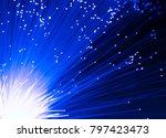 detail of blue growing bunch of ... | Shutterstock . vector #797423473