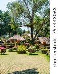 landscape of mae fah luang... | Shutterstock . vector #797443063