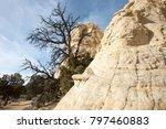 white dome shaped rock near... | Shutterstock . vector #797460883